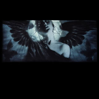 dark-angel88